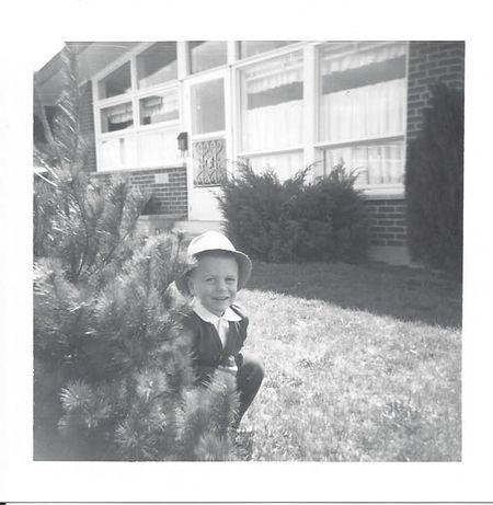Kappeljimtree