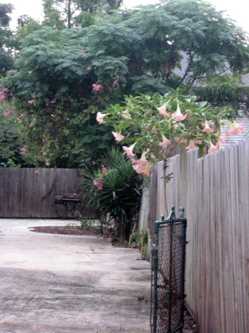 Home 2012 417
