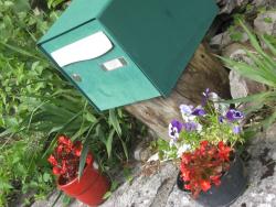 Mailboxwoodetc 026